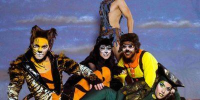 El llibre de la selva teatre musical